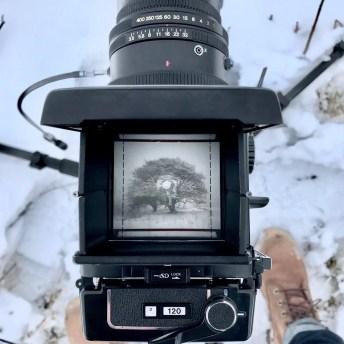 Mamiya RB67 + 90mm f/3.5