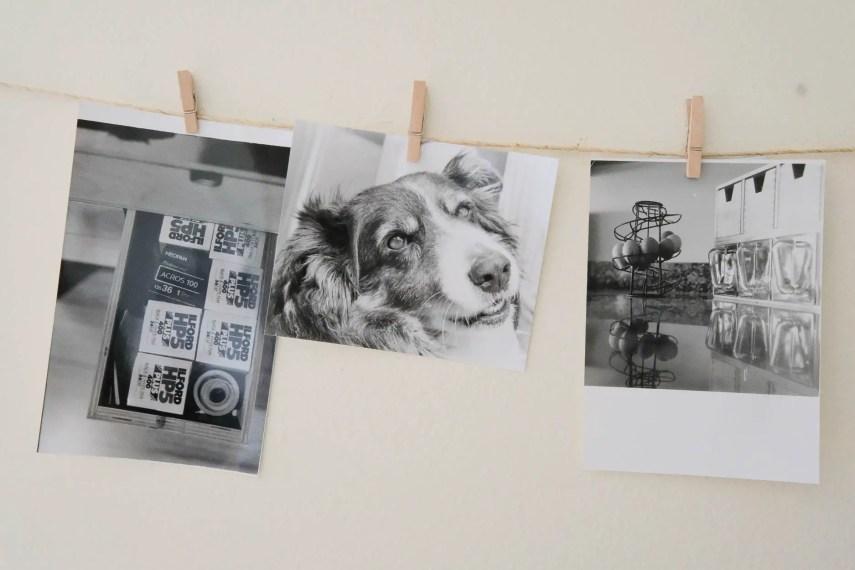 Budget darkroom - Sample prints