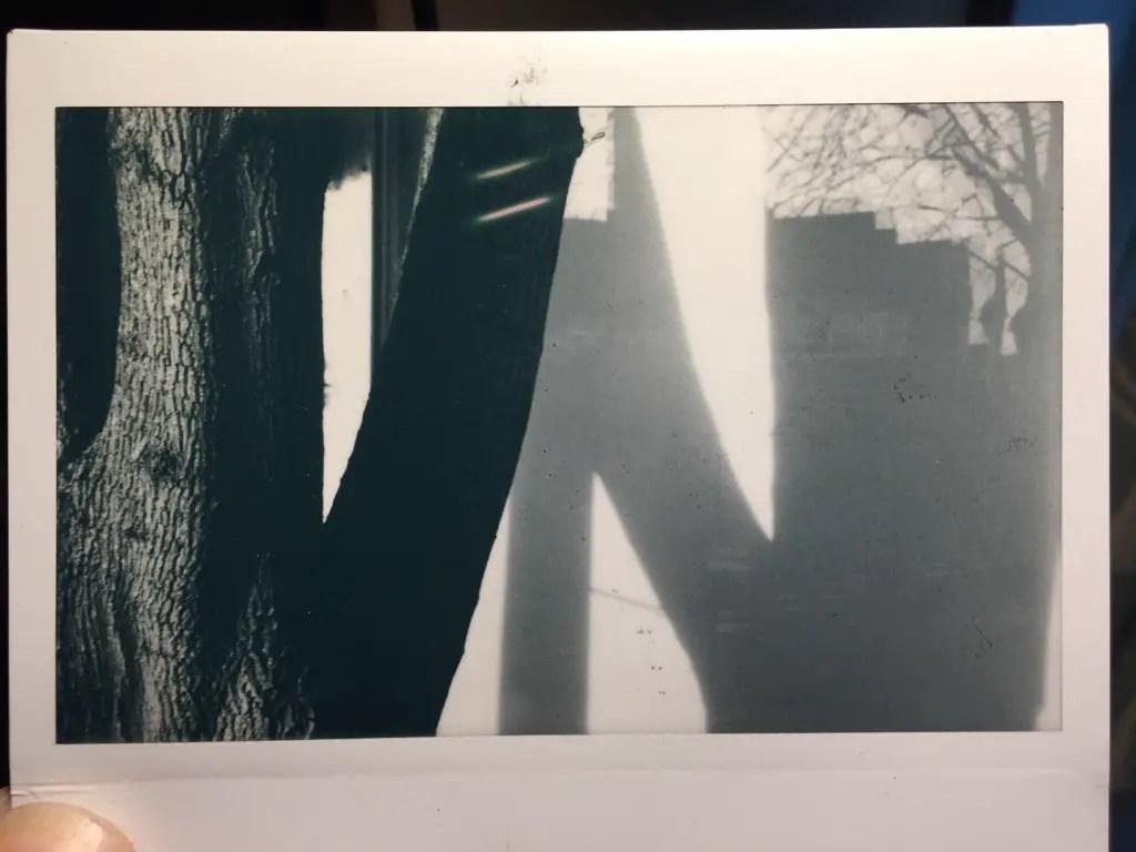 Instax monochrome cabin trees