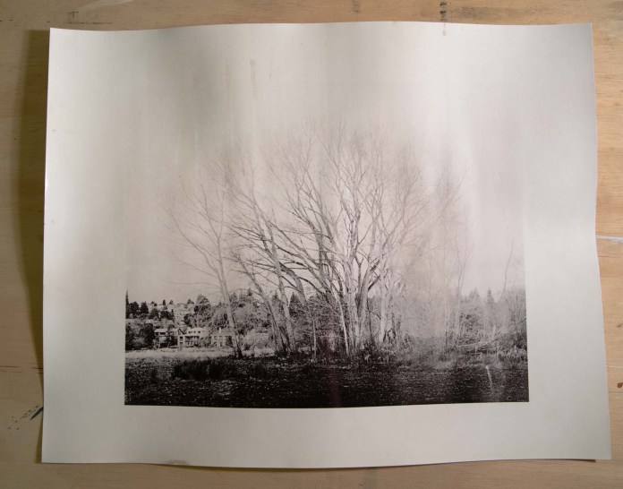 The final fomabrom print 6s, Arista .5:.5:24, soaked in H202 for 1 minute, and NOT flashed with my torch.