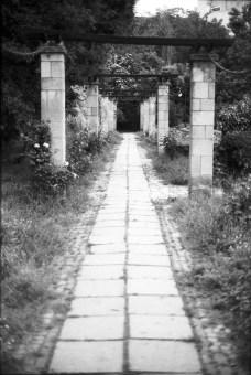 Marius-Andrei Voicu - Old path