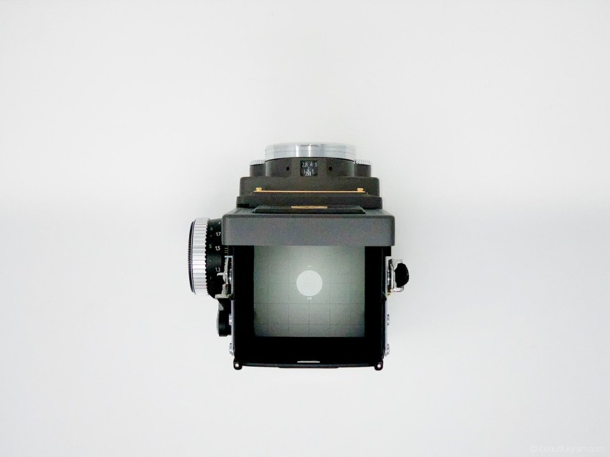 Rolleiflex 2.8GX Expression 75 Years Edition - Top, WLF open