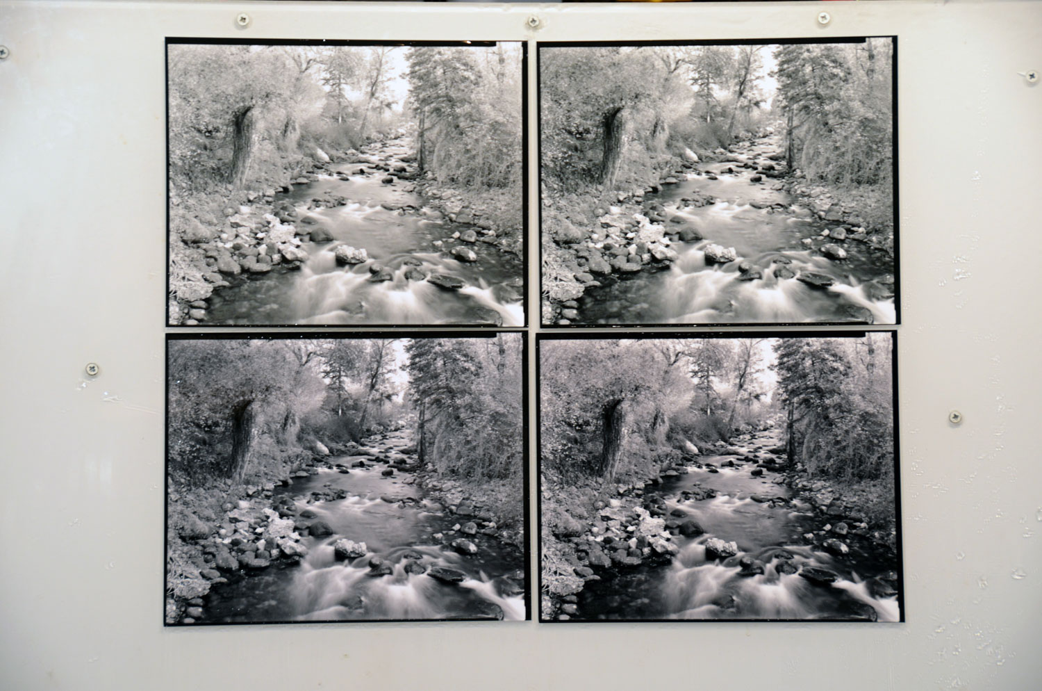 Contact Print Comparison (left to right). Top row - MGIV and MG RC untoned. Bottom row - MGIV and MG RC toned