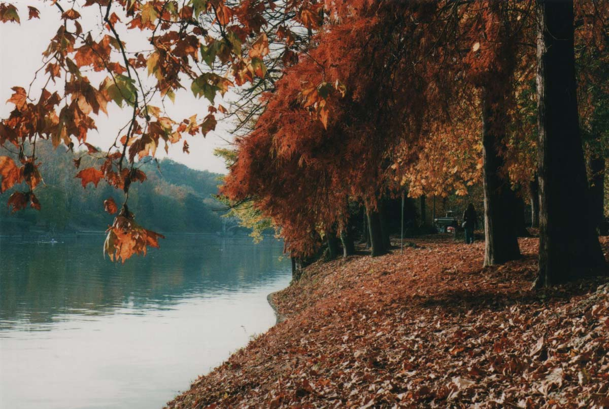 River Po Torino