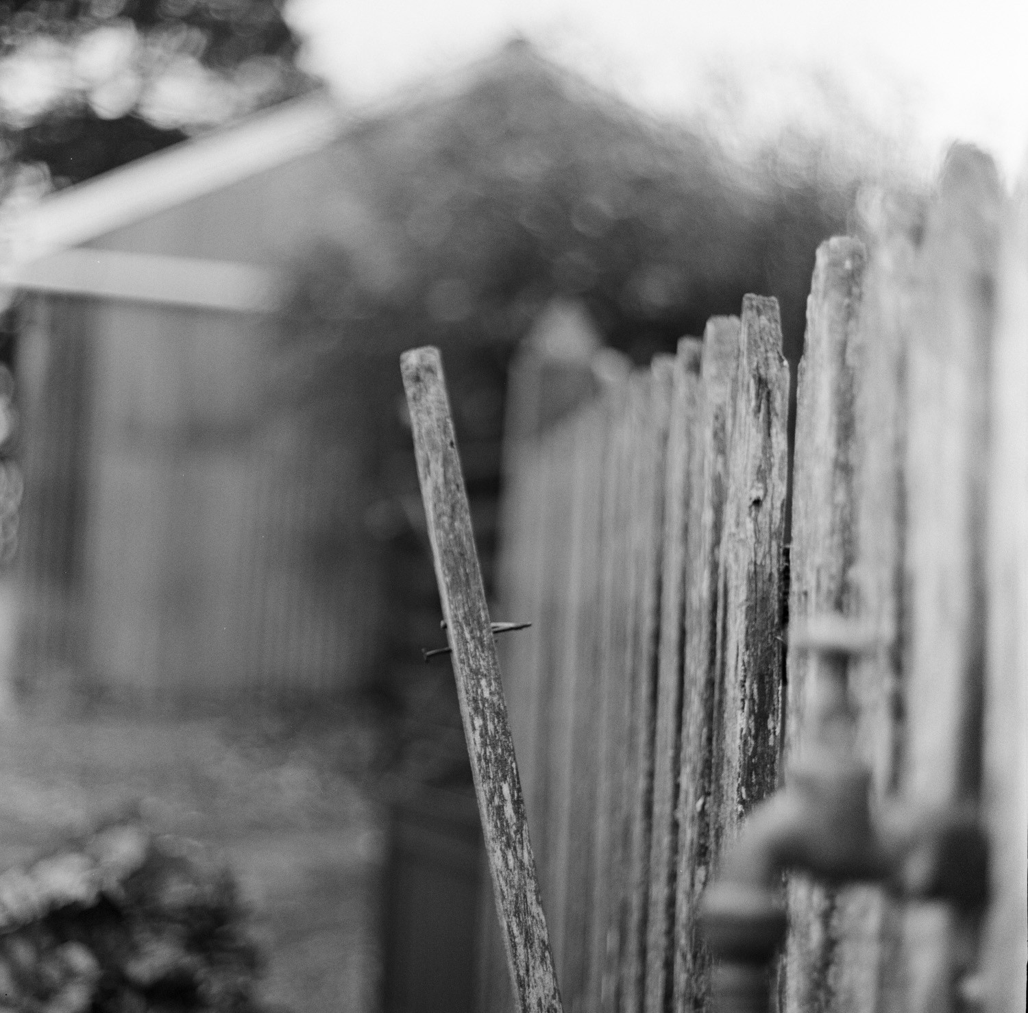 Broken fence post  Film: Ilford Delta 400 Lens: 80 mm f/2.8 Exposure:  not recorded