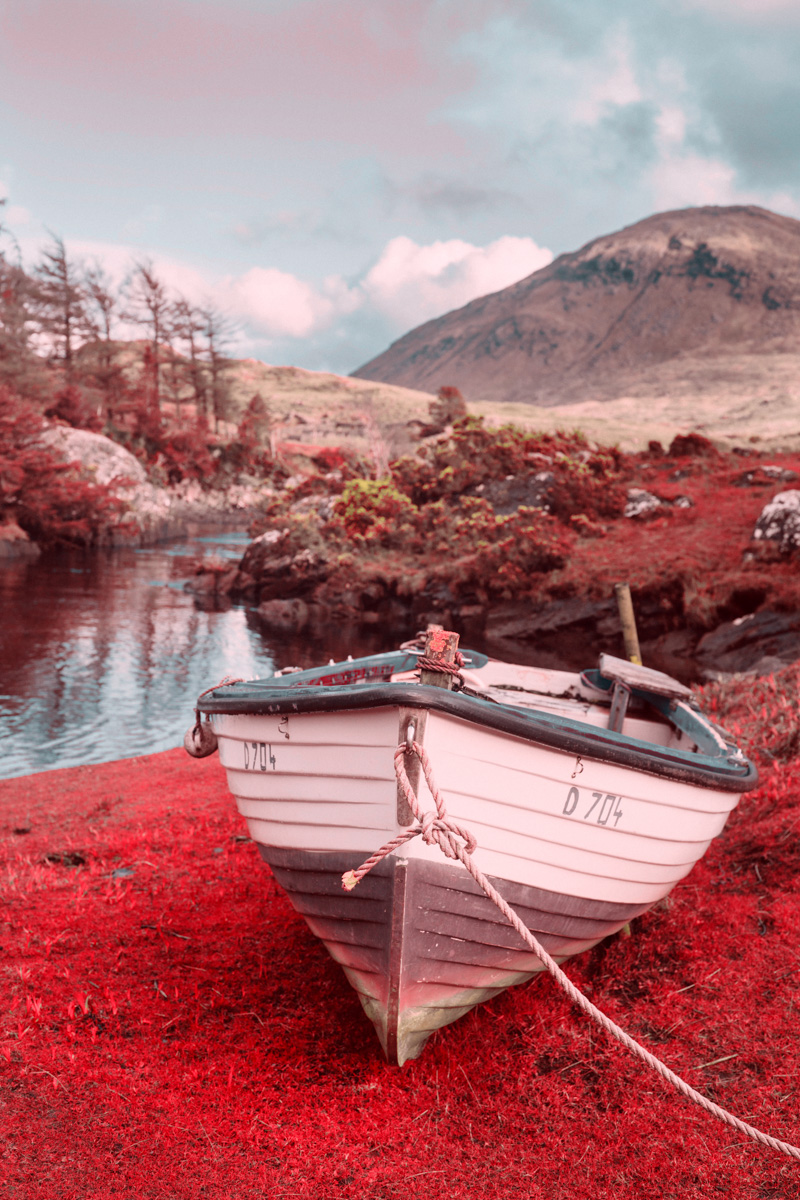 Firstlight Redscale - Ireland