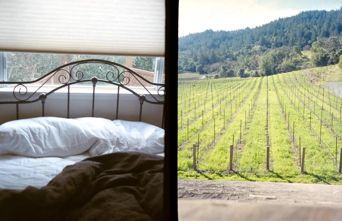 Waking up in wine country, Napa - Canon Demi EE17, Fuji Superia X-TRA 400