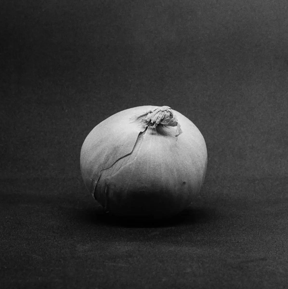 Onion #3 - ILFORD HP5 PLUS, Minolta SRT 101b, MD Rokkor 50mm f/1.7 - Nigel Fishwick