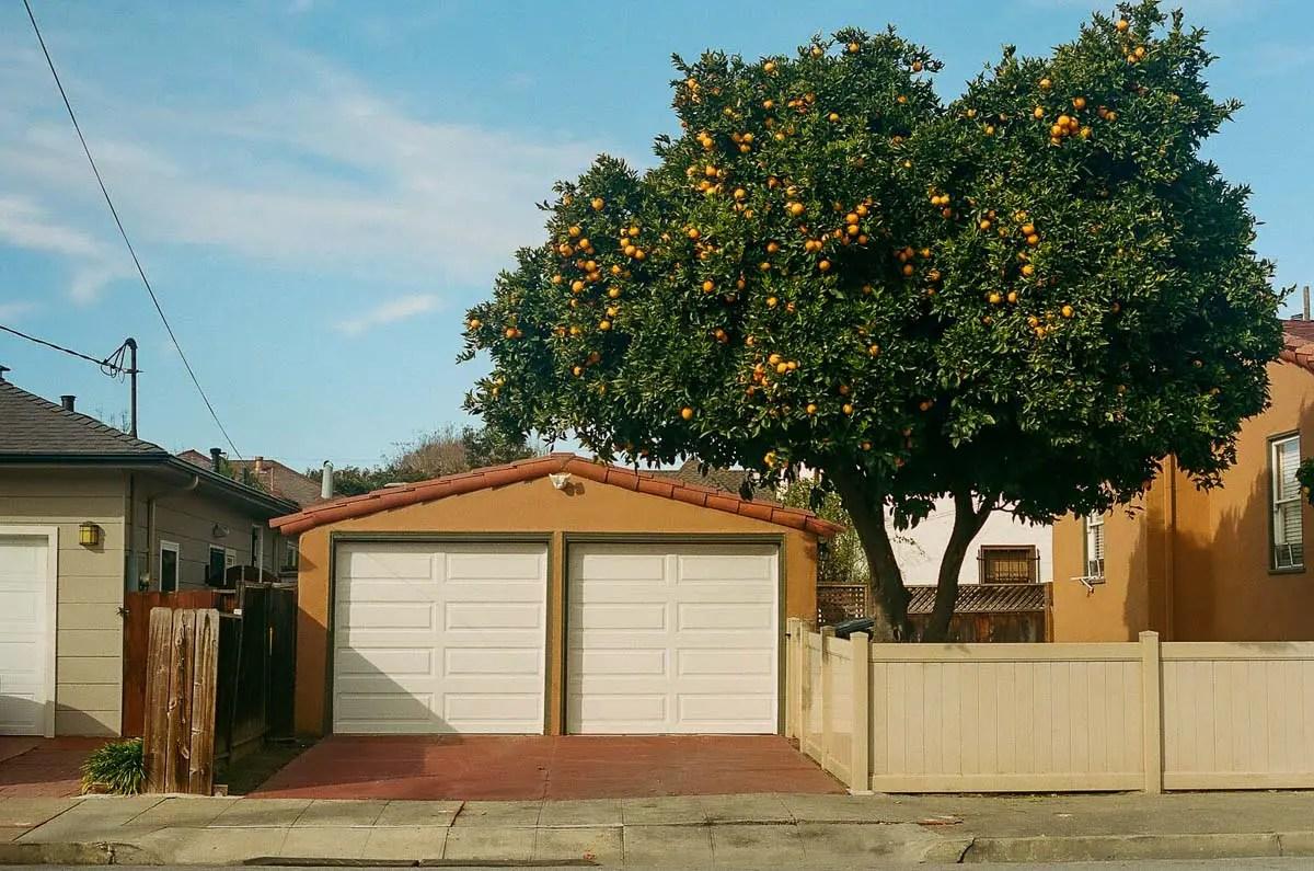 Kodak Portra 400 - San Leandro, CA