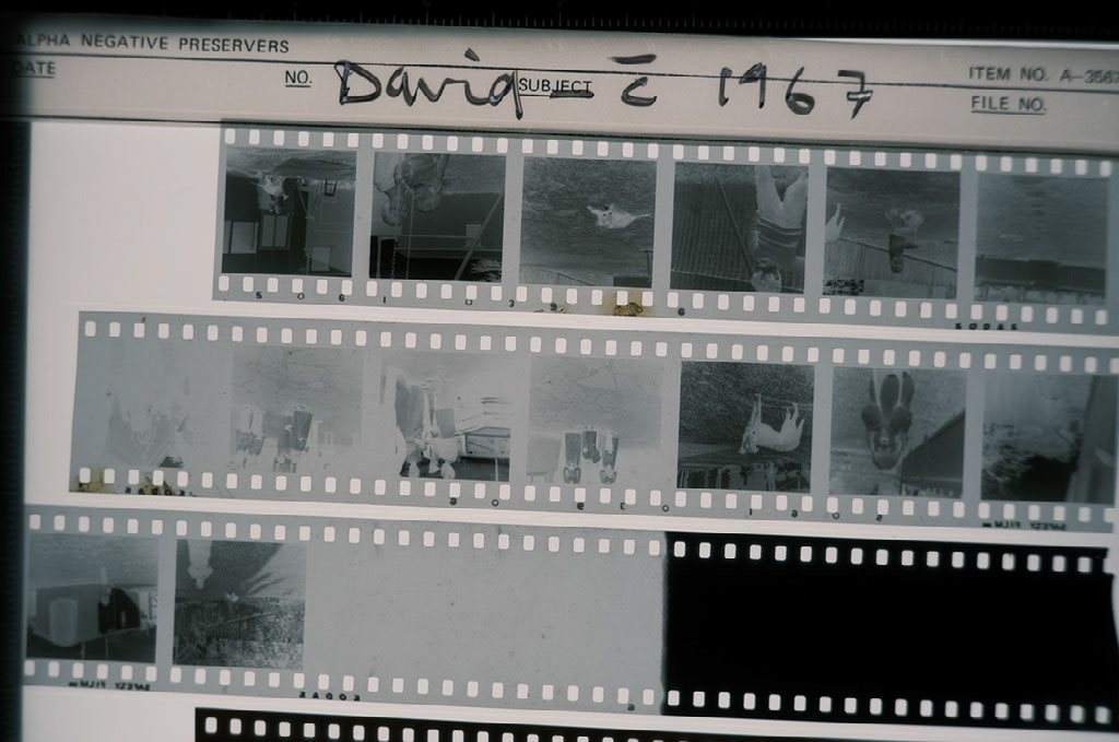 David Hume first roll negatives