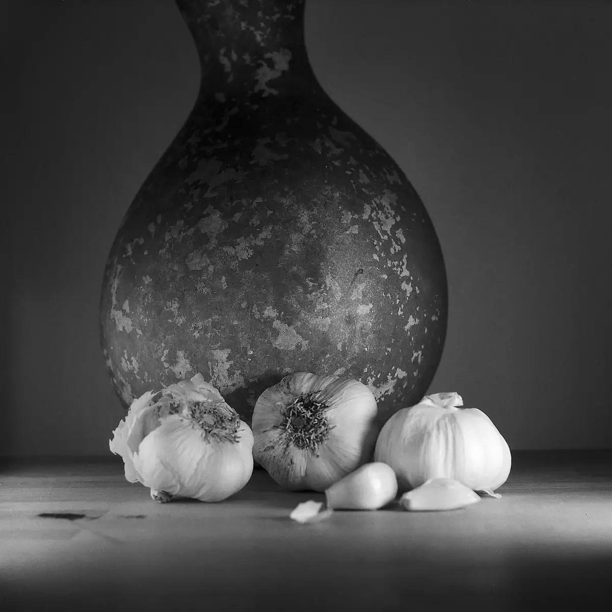 Garlic – Still Life Photography - Yashica MAT-124 with Fomapan 200 Creative
