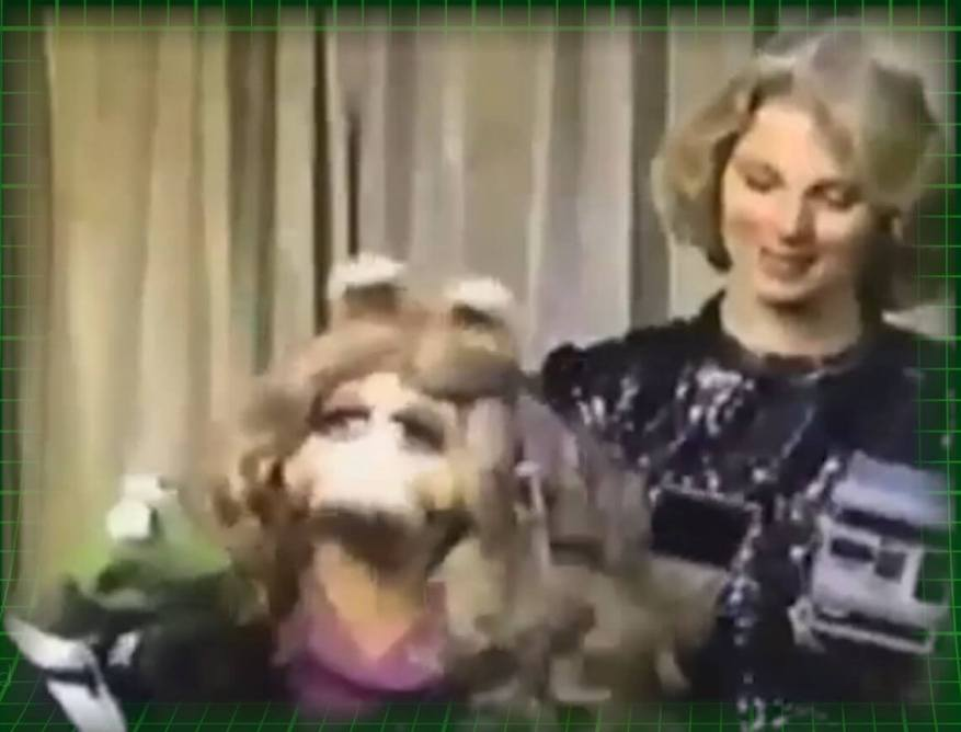 Celebs selling Polaroids - Mariette Hartley promoting the Amigo! with Miss Piggy and Kermit