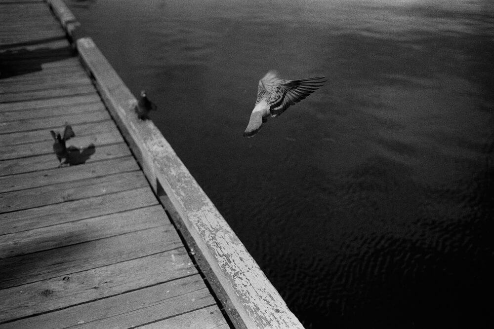 5 Frames... With ILFORD HP5 PLUS pulled 3-stops (EI 50 / 35mm format / Leica M4-2) - by Ryan HK