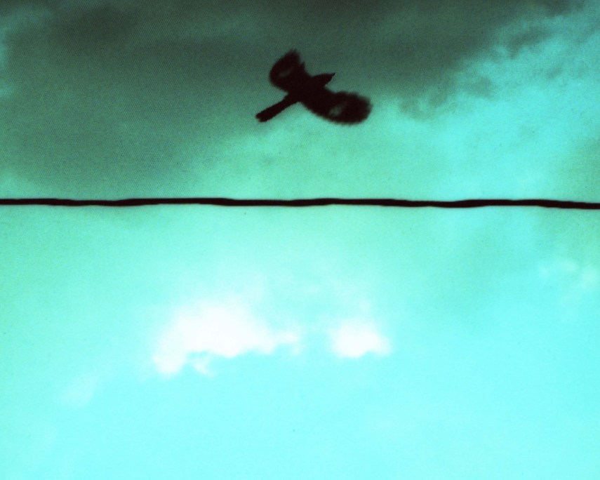 a bird flying over a wire with clouds in the backgrounds