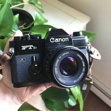 My Canon FTb QL + Canon FD 50mm f/1.8, Robert Guanci