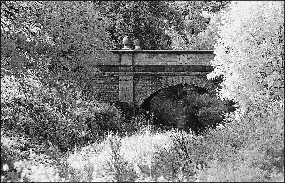 Bridge - ILFORD SFX 200