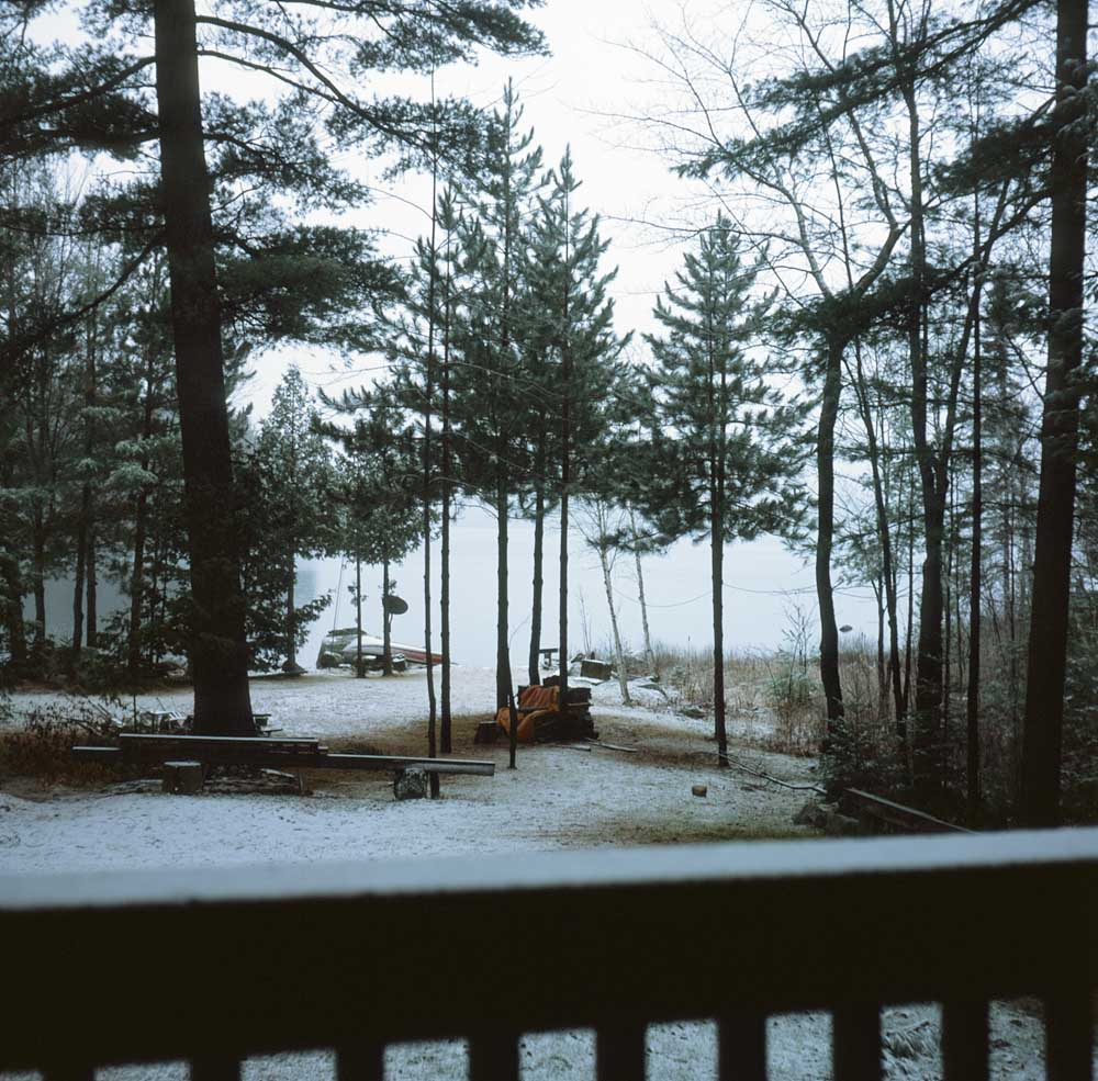 Snow-overed Trees - Fujifilm Provia 100F + Rolleicord III, f/8 1/30