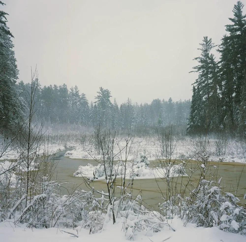 Snowy meadow - Fujifilm Provia 100F + Rolleicord III, f/8 1/60