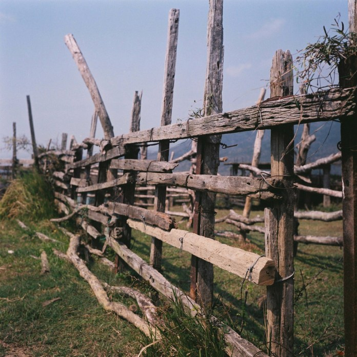 Fenced-in - Shot on Fuji Pro 160NS at EI 160. Color negative film in 120 format shot as 6x4.5.
