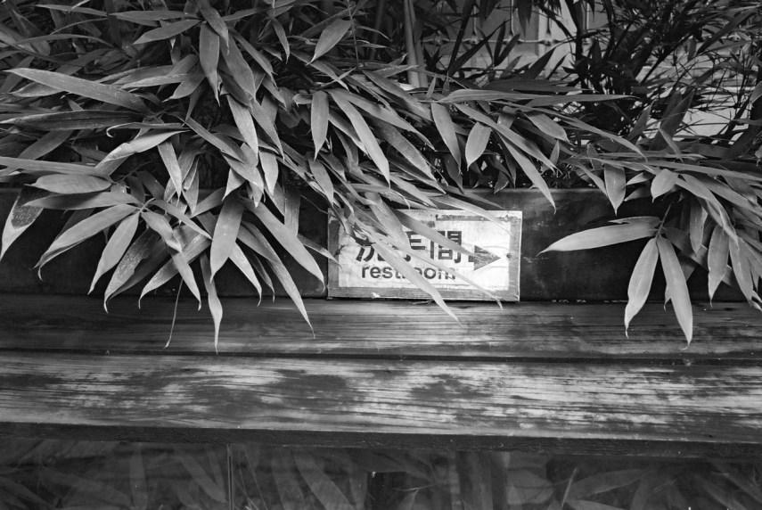 Warning: concealed restroom - Shot on Kodak BW400CN at EI 400 Black and white negative film in 35mm format