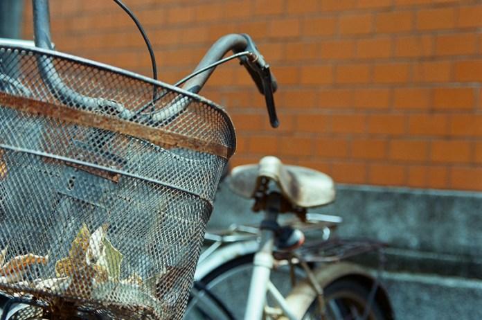 Basket case - Kodak VISION3 250D (5207) shot at ISO250