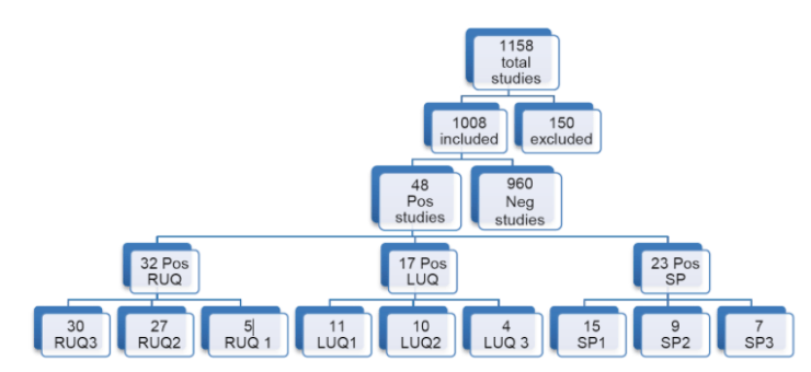 FAST exam quadrants