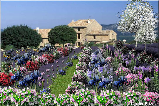 Image Result For Garden Design Tool
