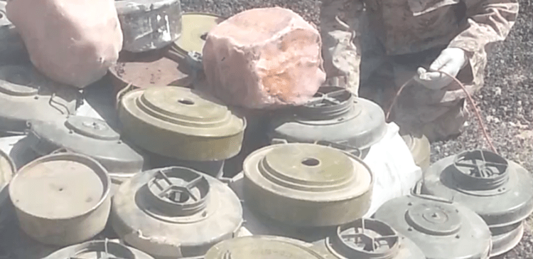 Hundreds of landmines removed in AlJawf