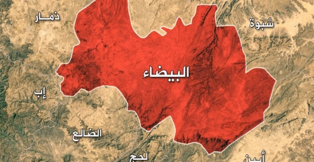 At least 25 Houthi militia, including a leader, killed, others captured in Al-Baydah