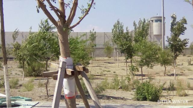 Xinjiang Authorities Build Massive Underground Prison
