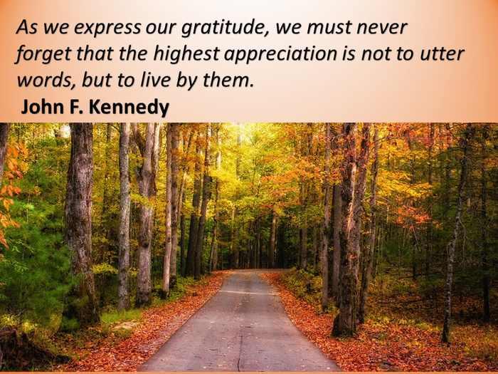 quotes thanksgiving gratitude