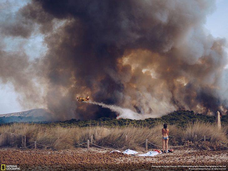 National Geographic - Φωτογραφία - Νικητές