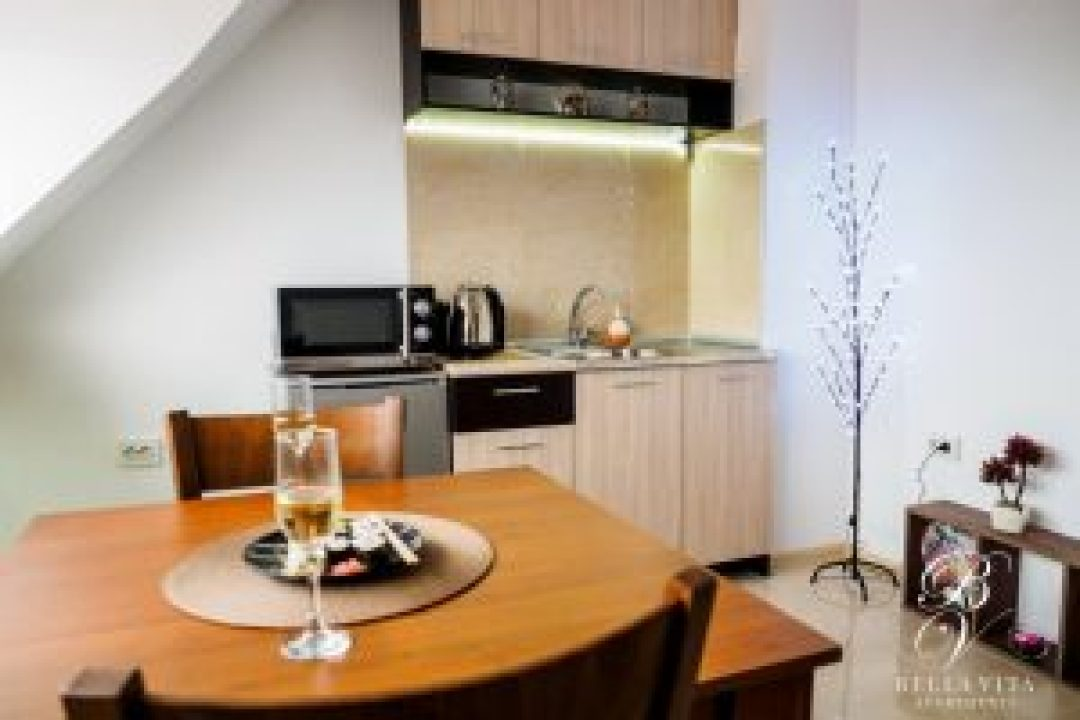 Short Term Rentals Blagoevgrad Bulgaria Stylish Cozy Kitchen