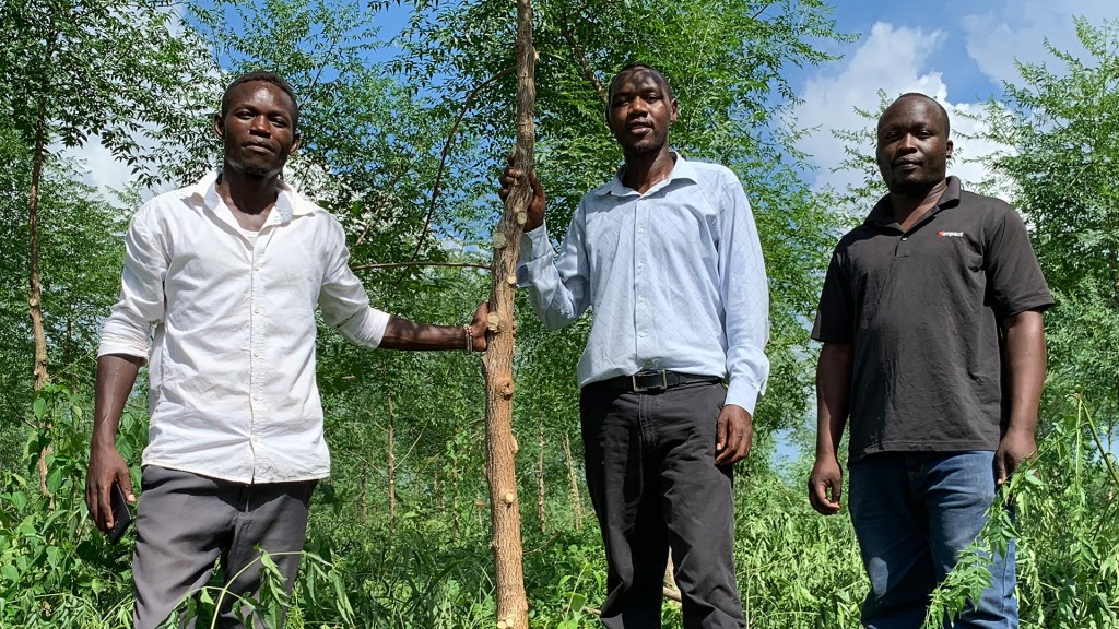 Wallace, Herman and Juma, supervisors at the Nyongoro plantations. Photo: Torgny Johnsson