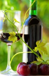 Tannins and their role in health
