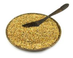 The diet of birdseed and Pineapple: weight loss, purifies, heals, etc.