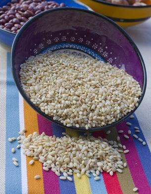 International Rice recipes