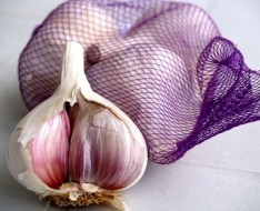 Therapeutic Properties of Garlic