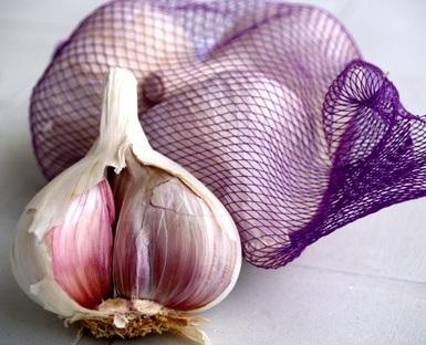 Therapeutic Properties of Garlic