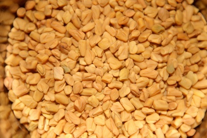 Fenugreek: Uses in medicine as well as increasing your beauty