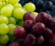 Grapes Recipes