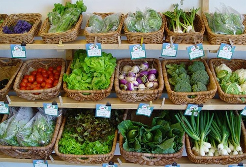 Stagnation of organic products in Aragon