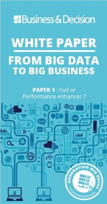White Paper: from Big Data to Big Busine$$