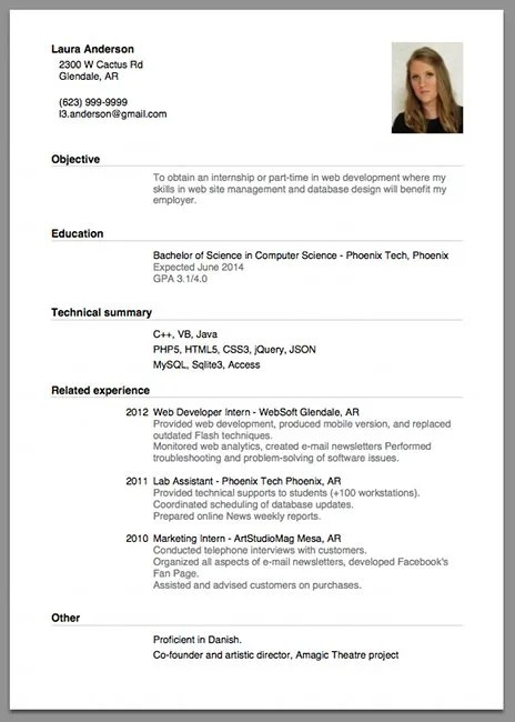 cv example job application updated