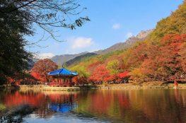 Fall in Korea: Naejangsan National Park