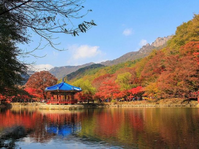 4 Autumn Adventures to Experience Fall in Korea's National Parks