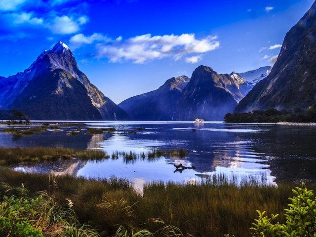 5 Reasons to Make New Zealand Your Warm Winter Vacation Destination