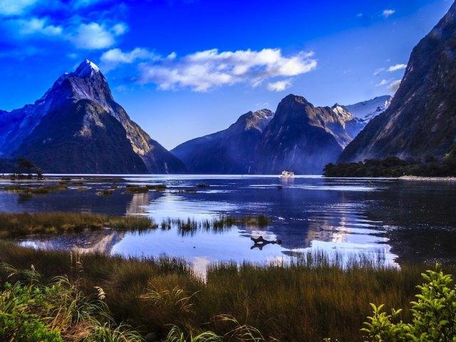 Warm Winter Vacation: New Zealand