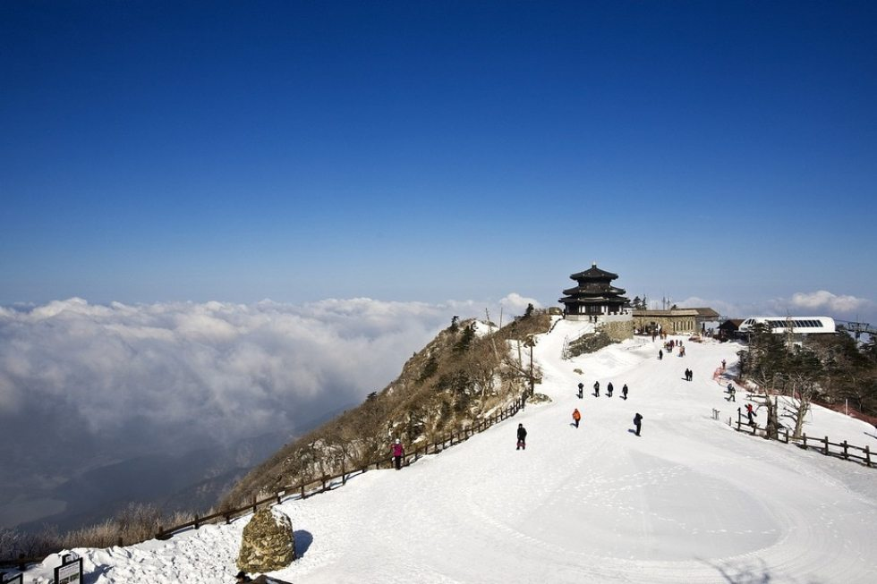 Christmas Family Vacation Ideas: Korea