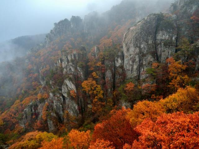 Visit these 5 Stunning National Parks in Korea This Fall
